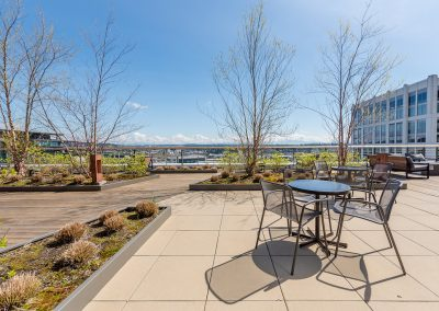 Rooftop garden and lounge - Alley 111 Apartments